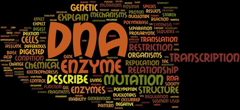 Dna and molecular genetics.